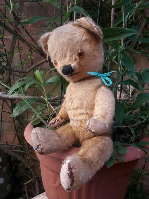 Percy Antique chad valley labelled English jointed mohair teddy bear 14