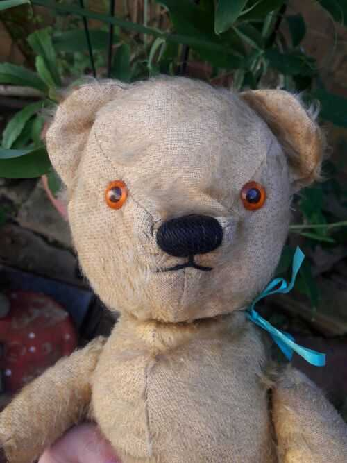 Antique chad valley labelled English jointed mohair teddy bear 14