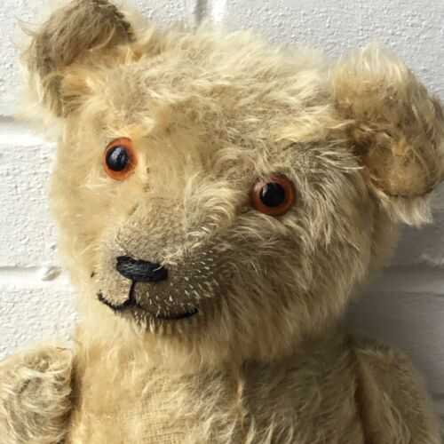 English Teddy Bear 1910/20. Good Condition.18/19 Antique/Vintage/Old.