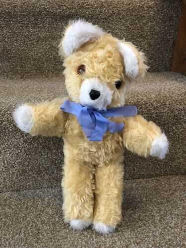 Vintage Teddy bear Attic Find